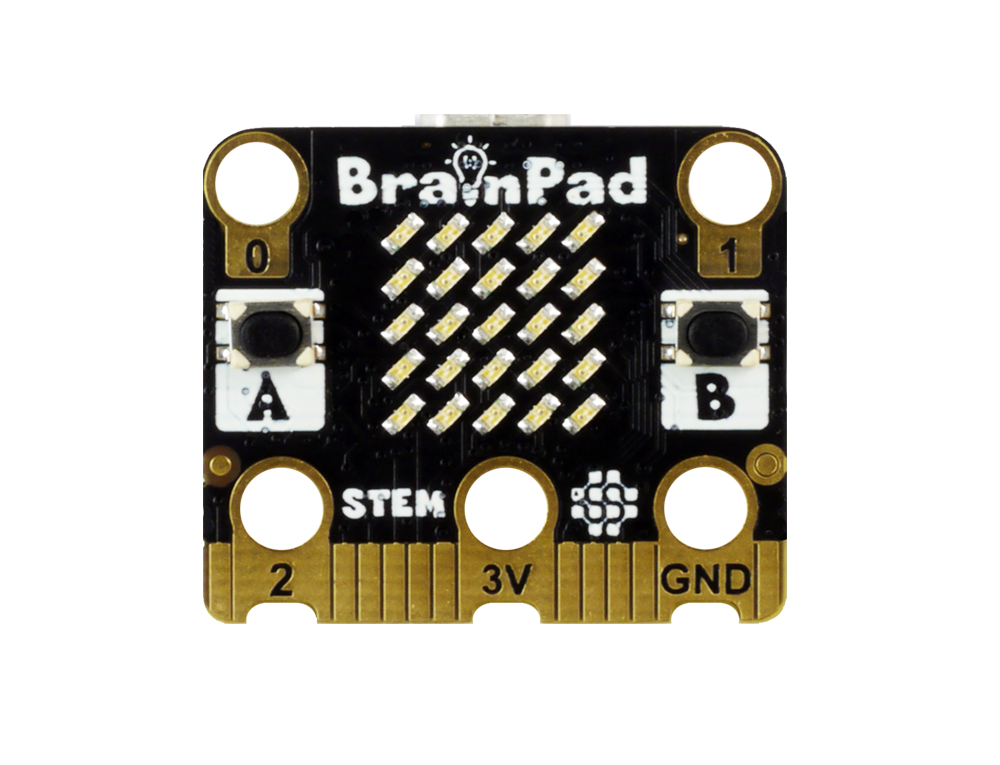 BrainPadTick-1
