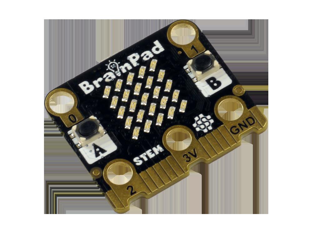 BrainPadTick-5